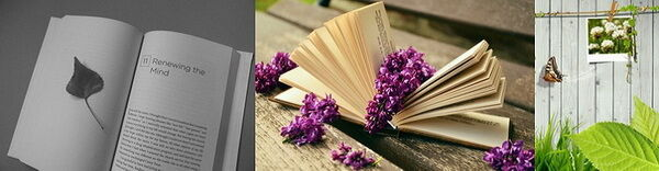 Dísznövény-szakkönyvek, dísznövények, díszkert mozaik-kép
