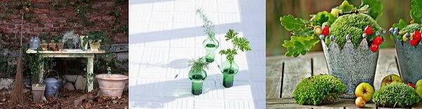 Díszkerti munka-sarok: növényi élet mozaik-kép